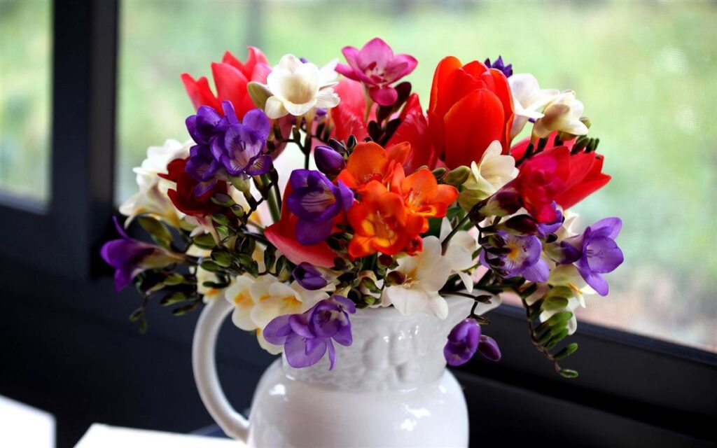 Kalite Çiçek Ofis Hediyesi